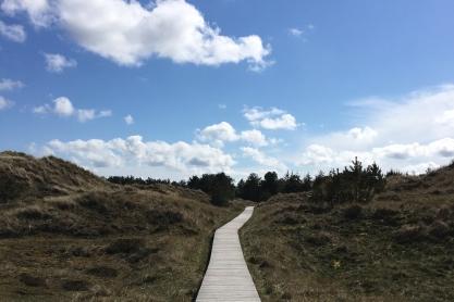 Dünen-Wanderweg